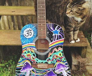 guitar, cat, and music image