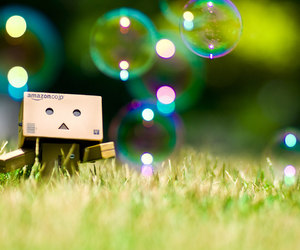 danbo and bubbles image