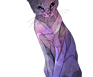 cat, color, and drawing image