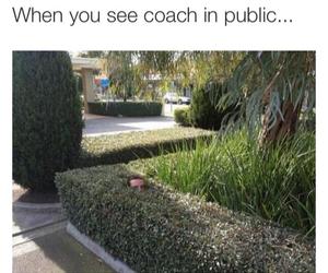coach, crazy, and true image