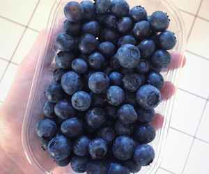 fruit, berry, and blueberry image