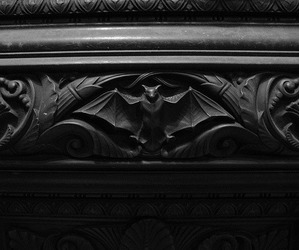 architecture, bat, and black and white image