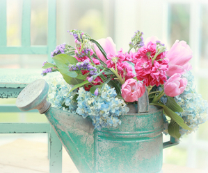 flowers, pastel, and floral image