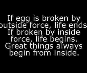 quote, life, and egg image
