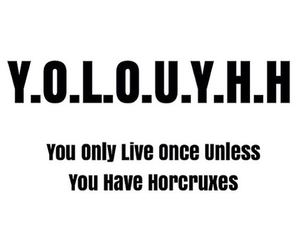 harry potter and yolo image