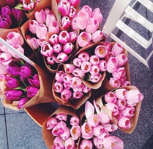 adore, floral, and flowers image