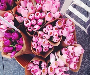 adore, tulips, and floral image
