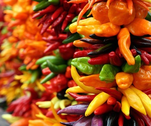green, Hot, and peppers image