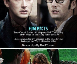 harry potter, doctor who, and david tennant image