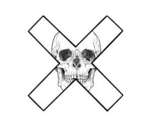 black and white, overlay, and skull image