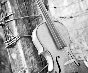 music, violin, and black and white image