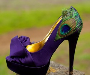 shoes, peacock, and heels image