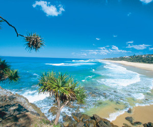 australia, beach, and Queensland image