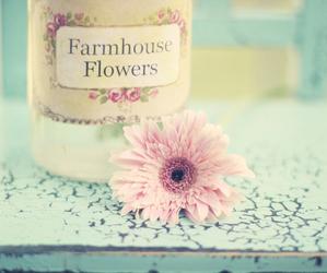 pastel, vintage, and floral image