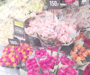 dreamy, flower, and flowers image