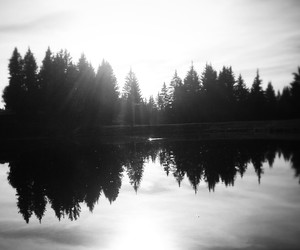 autumn, black and white, and lake image