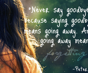 goodbye, peter pan, and quote image
