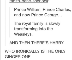 funny, harrypotter, and hp image