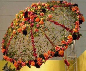 umbrella and flowers image