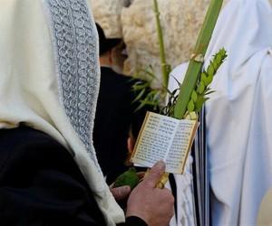 sukkot and סוכות image
