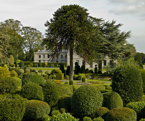 garde, gardens, and house image
