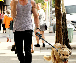 actor, dog, and Hot image