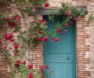 rose and door image