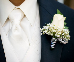 wedding, rose, and groom image