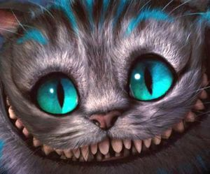 cat, alice in wonderland, and smile image