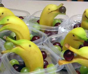 banana, dolphin, and fruit image