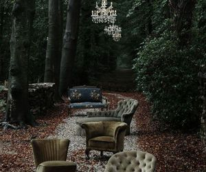 forest, vintage, and chair image