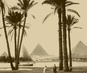 egypt, palm trees, and sailing image