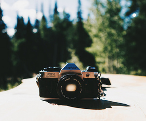camera, canon, and forest image