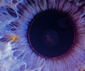 eye, grunge, and purple image