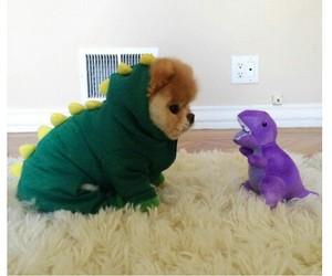 dog, cute, and dinosaur image