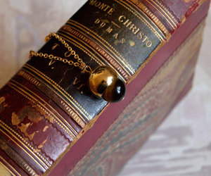acorn, book, and fall image