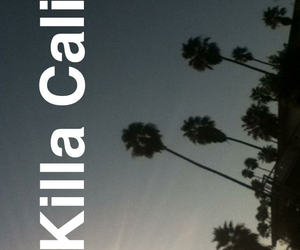 california, palm trees, and places image