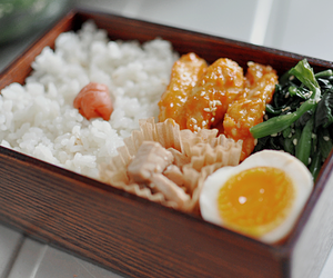 bento, rice, and delicious image