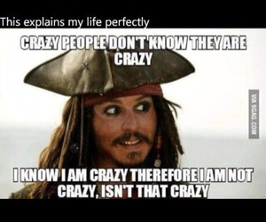 funny, crazy, and johnny depp image