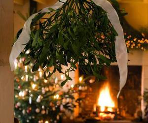 christmas, mistletoe, and winter image
