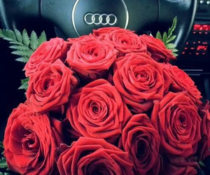 red, audi, and rose image