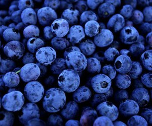 blue, blueberries, and food image