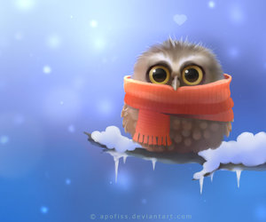 owl, cute, and winter image