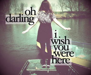 wish, Owl City, and darling image