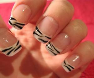 nails, zebra, and nail art image