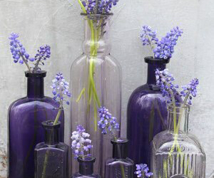 lilac, perfection, and case image