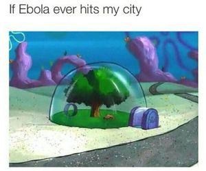 funny, ebola, and spongebob image