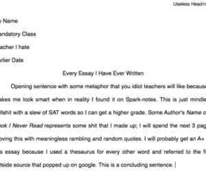 essay, funny, and lol image