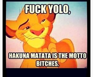 yolo, hakuna matata, and motto image