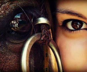 eyes and horse image